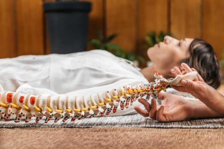 Kurs Osteopatyczny kobieta i ręce wykładowcy na modelu kręgosłupa