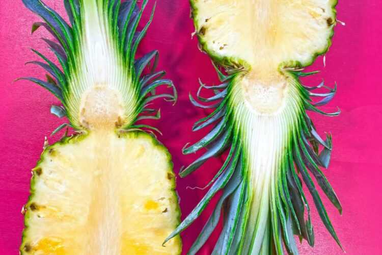 Jak jeść ananasa